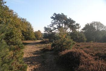 Camping-De-Eikeboom-2012-016