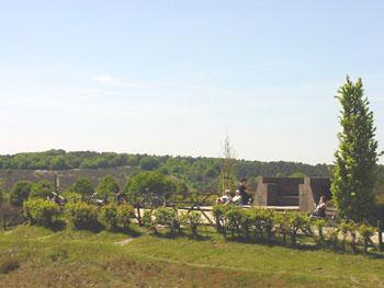 Veluwe-Posbank-2009-013